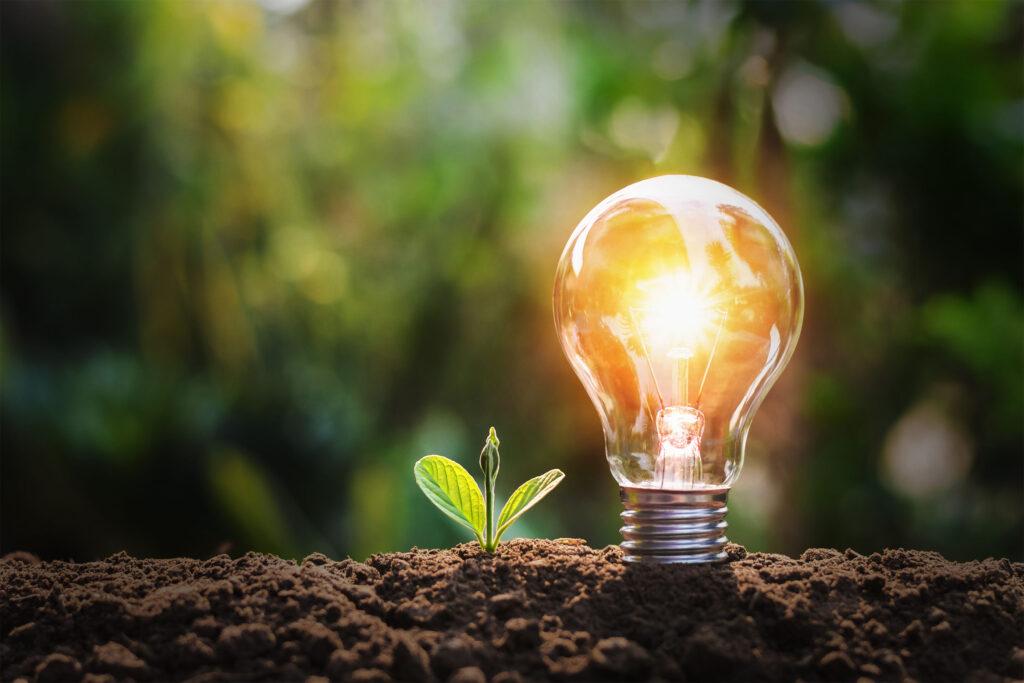 Il risparmio energetico e la natura